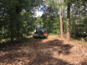 Traktor_Forst_mulchen_Rodung_verwildeter_Flächen
