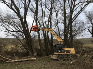 Woodcracker_beim_Baumfällen_an_Bagger